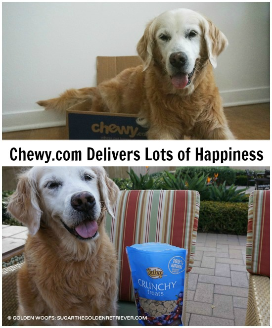 chewy.com delivers lots of happiness