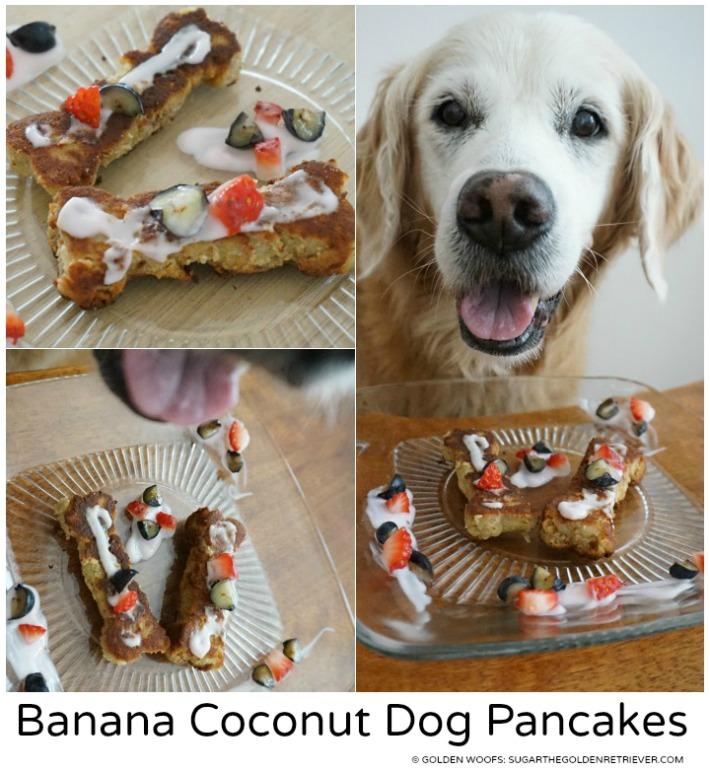 dog pancakes banana coconut