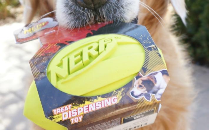 nerf treat dispensing dog toy