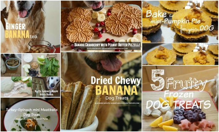 15 Most Popular Dog Treat Recipes in 2015