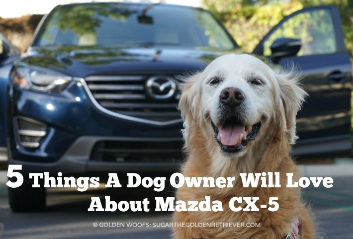 5 Things A Dog Owner Will Love About Mazda CX-5 #DriveMazda