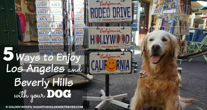 5 Ways to Enjoy Los Angeles & Beverly Hills With Your Dog