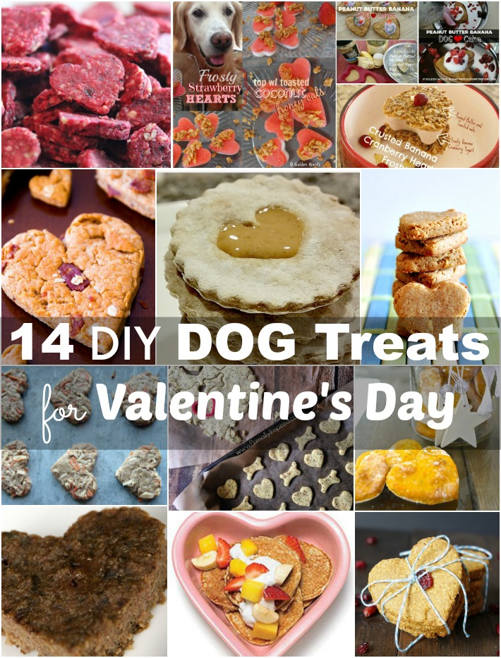 14 Diy Dog Treats For Valentine S Day Golden Woofs