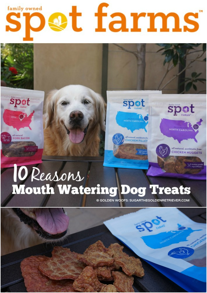 Mouth Watering Dog Treats Spot Farms