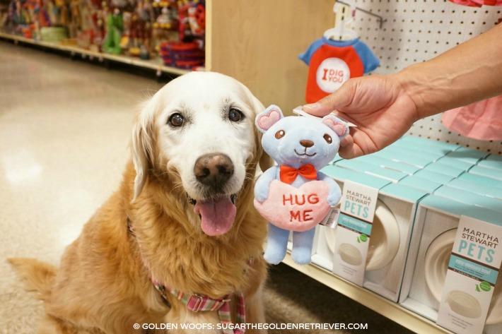 PetSmart Martha Stewart Pets Valentine