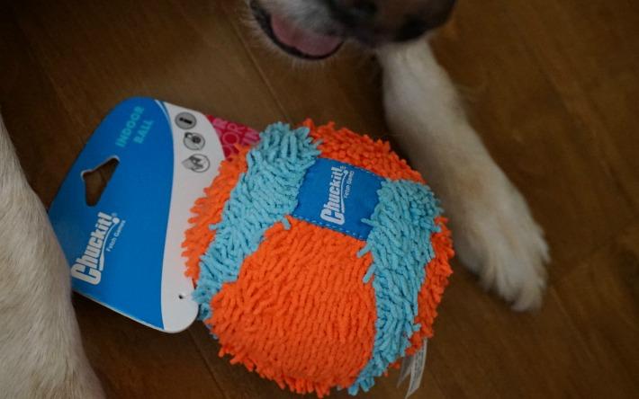 Petmate ChuckIt Indoor Ball