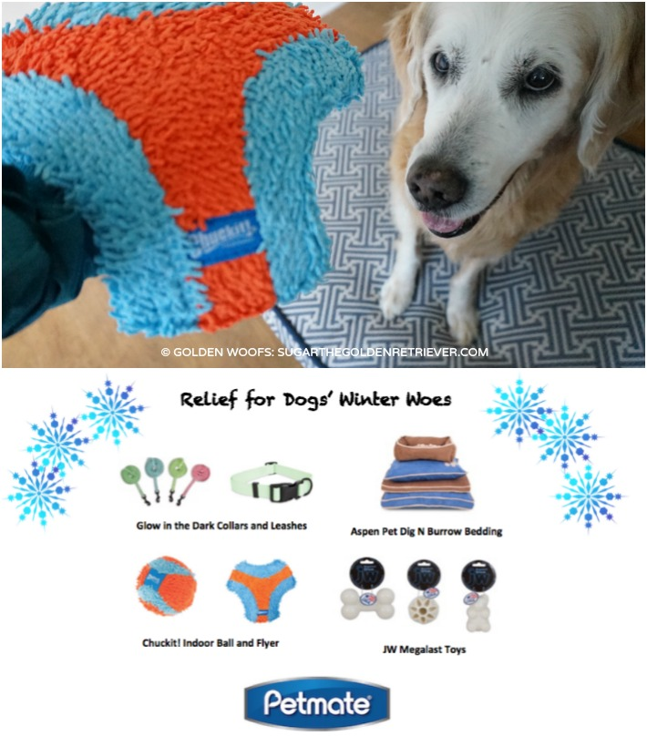 Petmate Dogs' Winter Woes