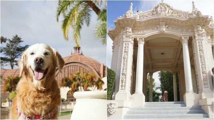 SUGAR visits Balboa Park
