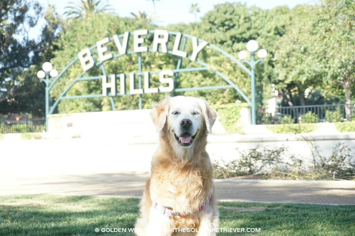 Beverly Gardens Park - Beverly Hills Sign