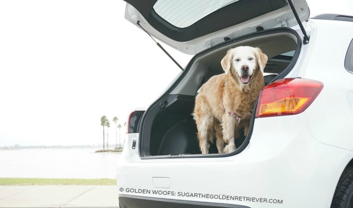 cargo Outlander Sport