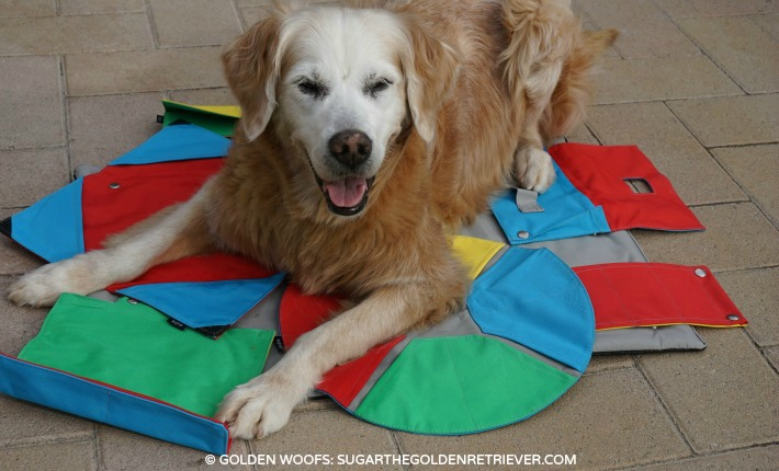 BUSTER Dog Activity Mat