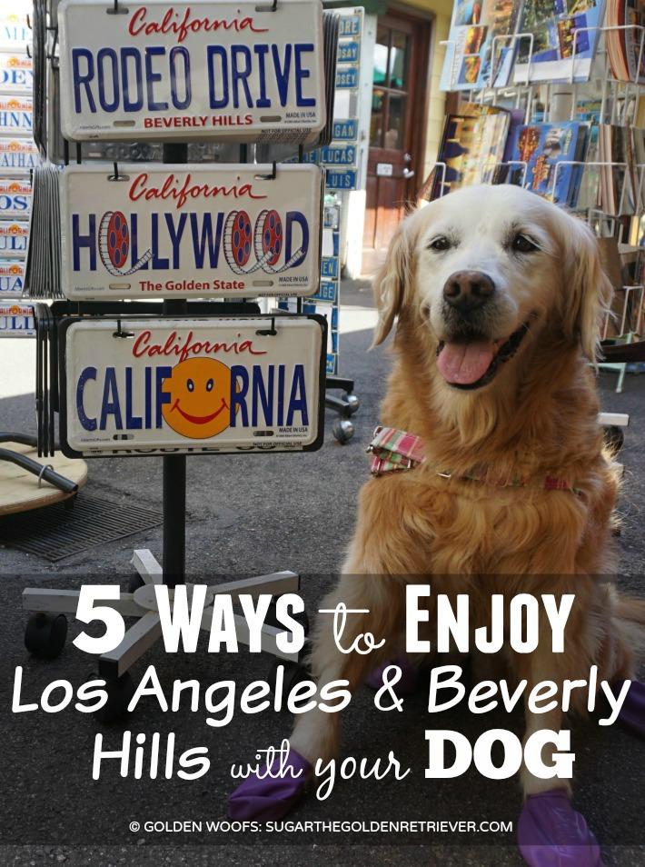 5 Ways Enjoy Dog Friendly Los Angeles & Beverly Hills