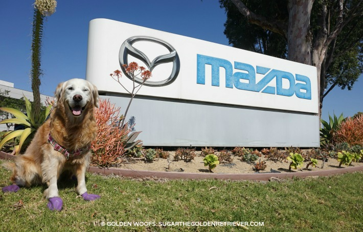 Mazda SoCal Headquaters