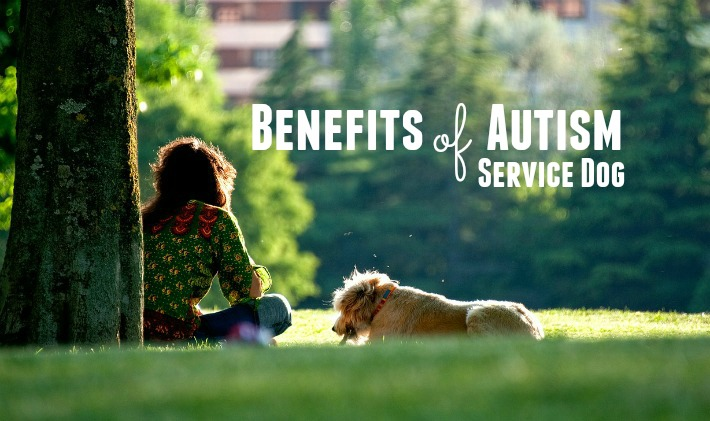 Amazing Benefits of Autism Service Dog