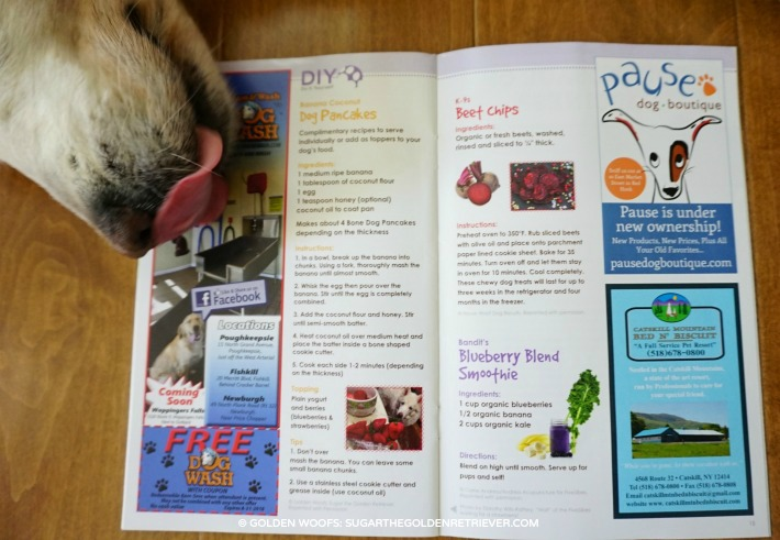 Golden Woofs recipe featured in paw print magazine
