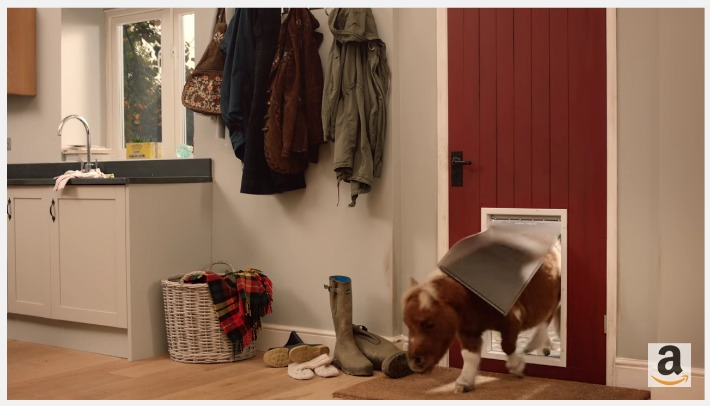 Amazon Prime TV Commercial: Freedom Pet Door By PetSafe