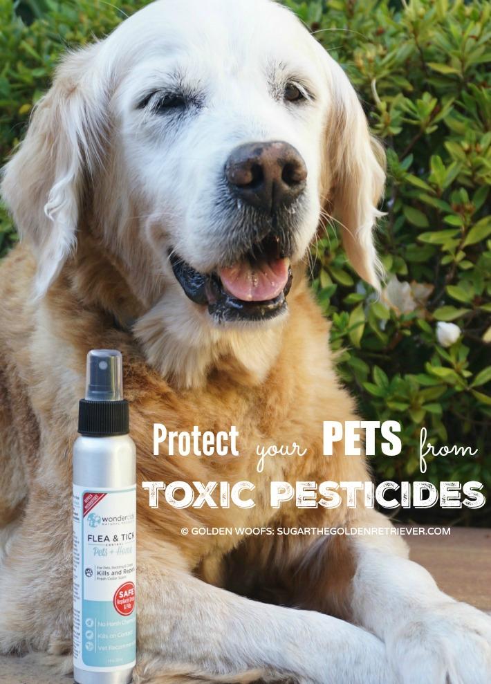 Wondercide protect pets toxic pesticides