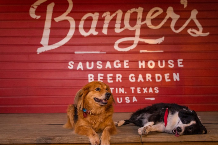 dog friendly Bangers austin tx