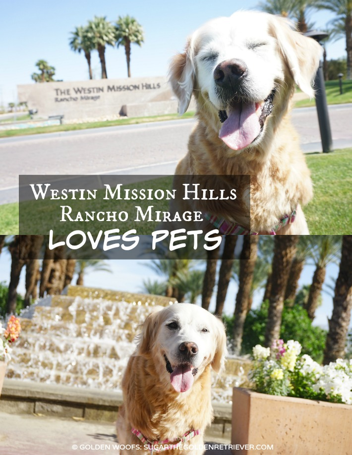 Westin Mission Hills LOVES Pets