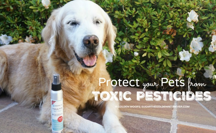 protect pets toxic pesticides wondercide