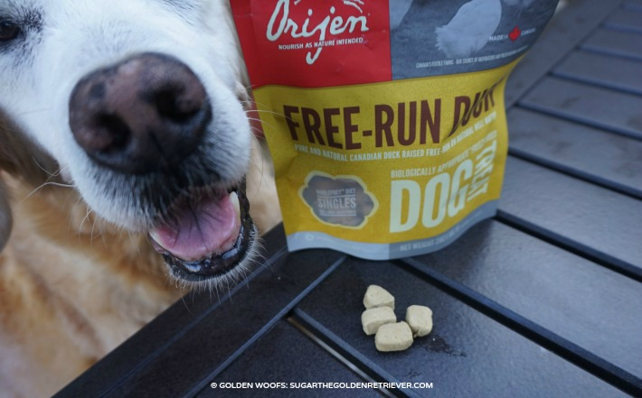 Orijen Free run duck dog treats