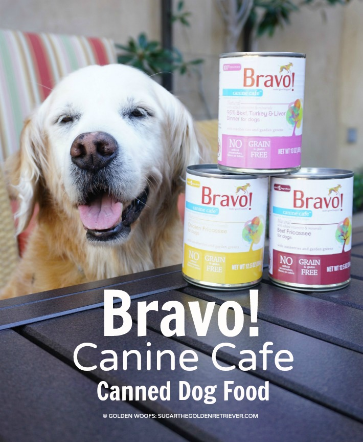 Bravo Pet Foods Canine Cafe