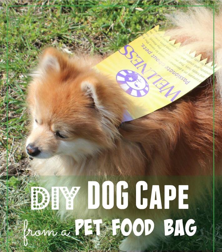 DIY Dog Cape