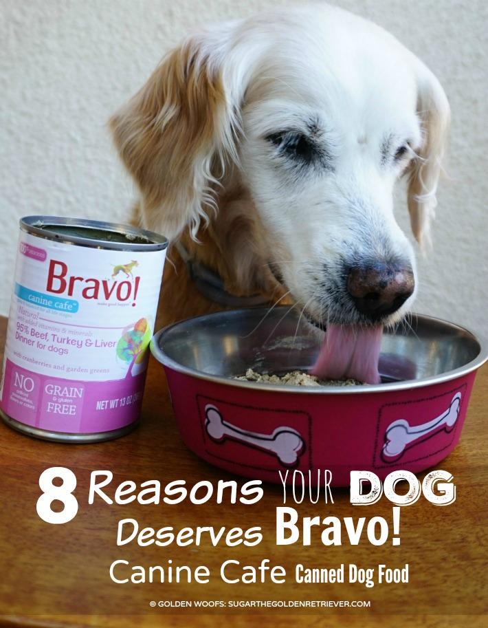 Dog Deserves Bravo Canine Cafe Canned Dog Food