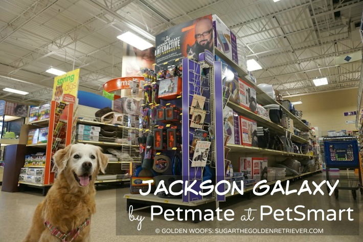 Jackson galaxy collection by petmate at petsmart for Jackson galaxy shop