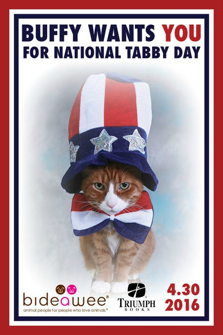 First National Tabby Day