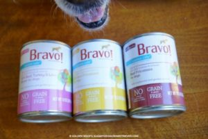 bravo canine cafe fricassee dinners