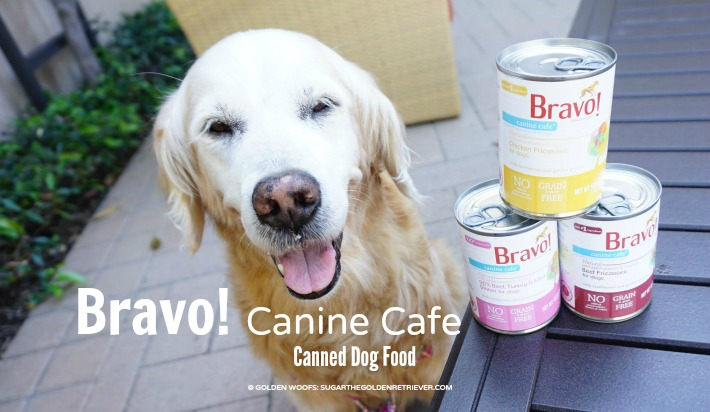 Bravo Canine Cafe Canned Dog Food