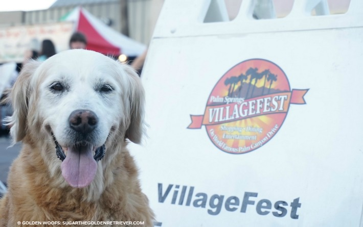 dog friendly village fest palm springs