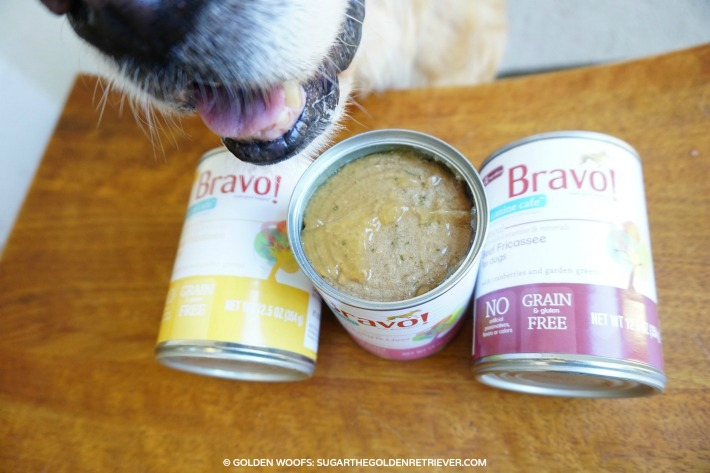grain free canned dog food