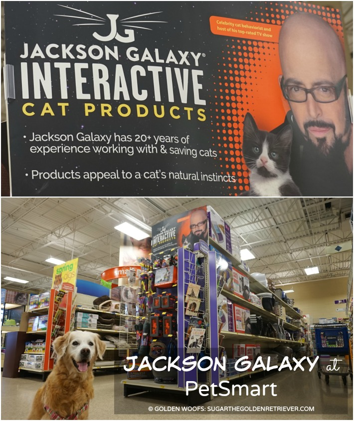 Jackson galaxy collection by petmate at petsmart for Jackson galaxy cat products