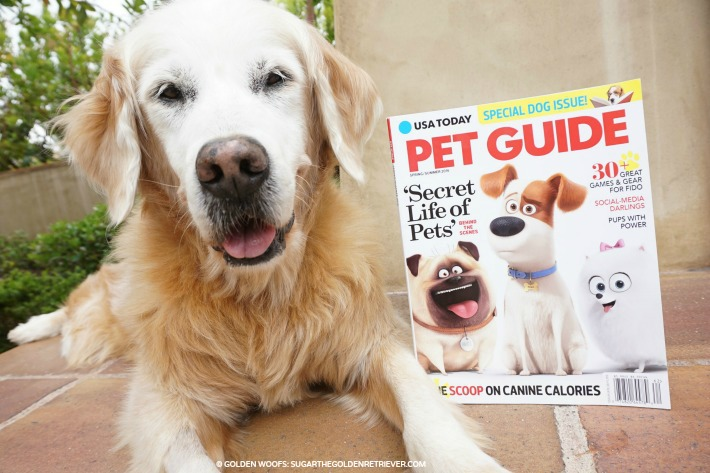 Featured In USA Today Pet Guide