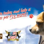 Kriser's Natural Pet Teams Up with Wings of Rescue