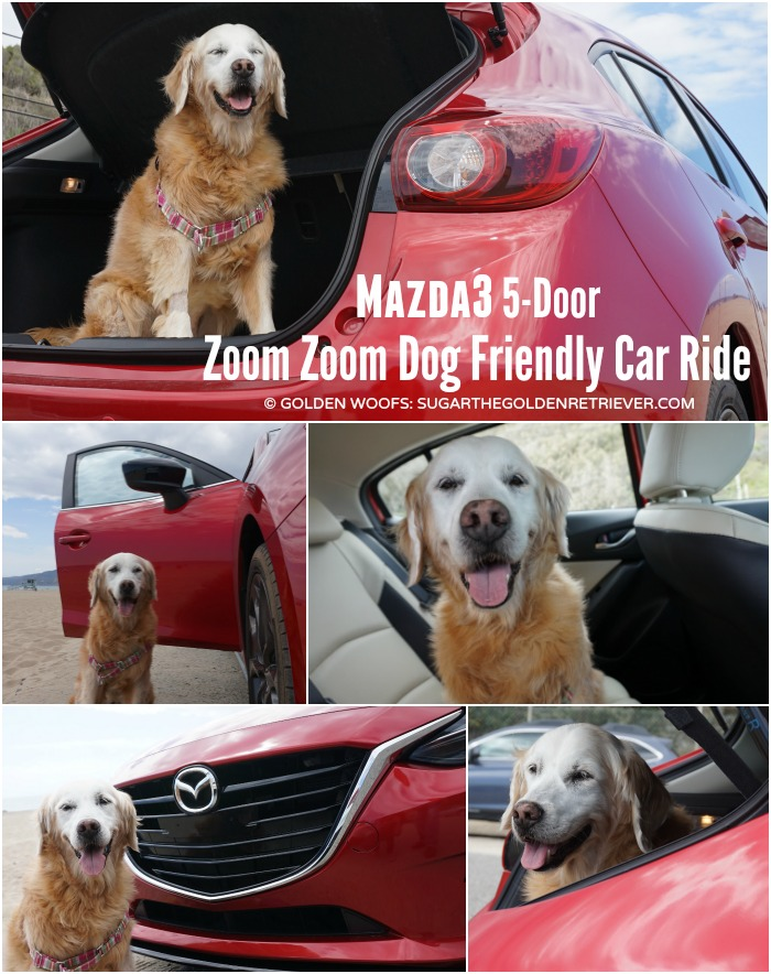dog friendly car Mazda3