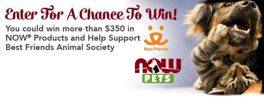 Now Pets Sweepstakes
