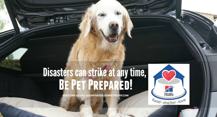 Be #PetPrepared Create A Disaster Preparedness Plan