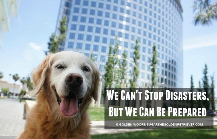Disaster Be Pet Prepared