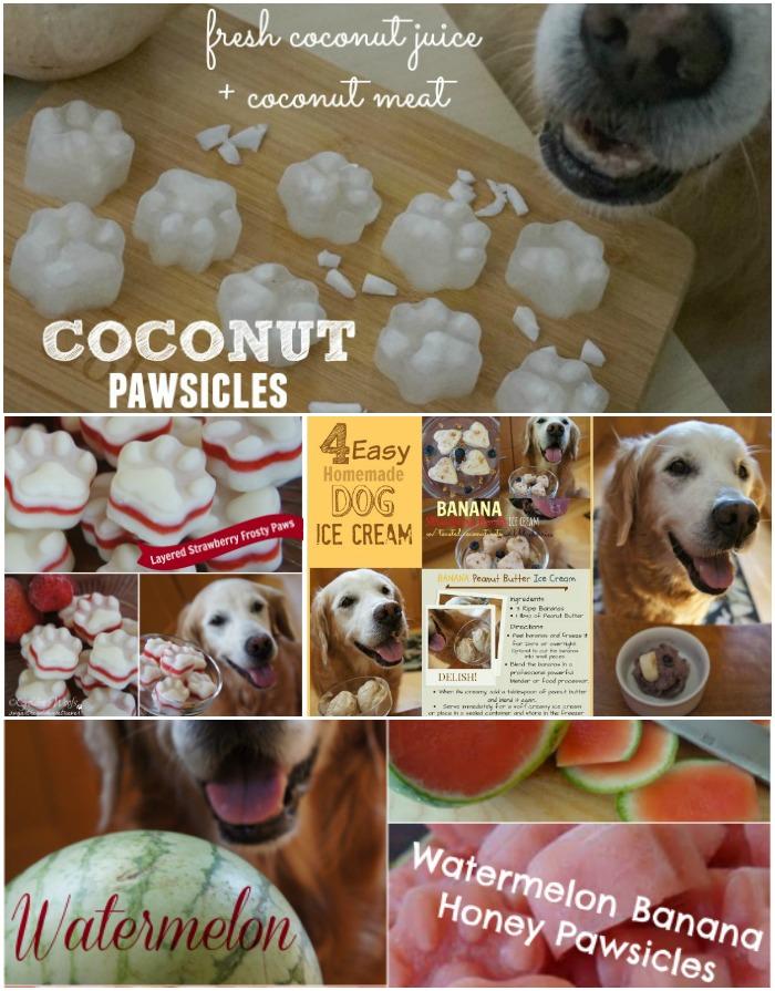 Cool Dog Treats