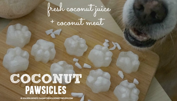 fresh coconut popsicles
