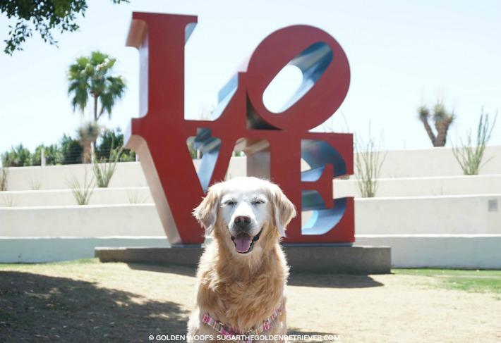Scottsdale Public Art The Love Sign