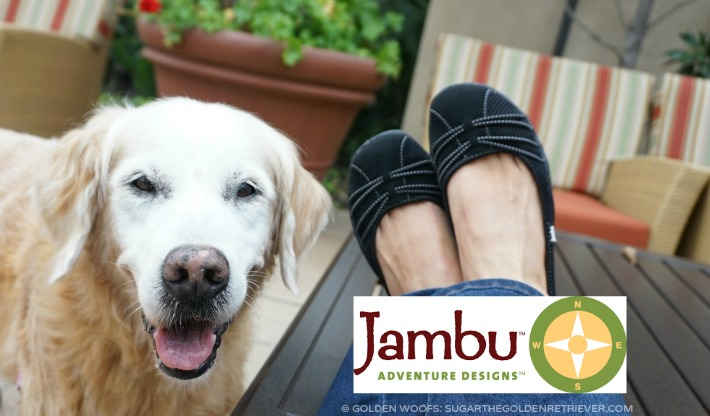 in stock cheapest shades of spin too jambu footwear dog walking shoes - Golden Woofs
