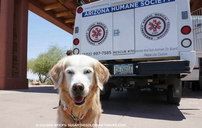 Arizona EAMT truck