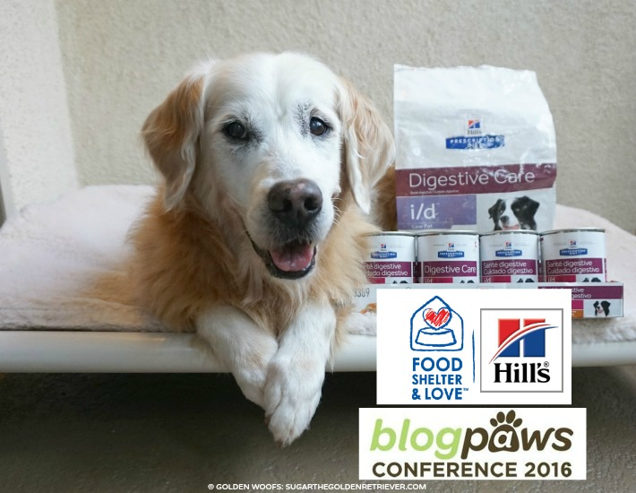 Pet Prepared To #BlogPaws Golden Thanks #HillsPet