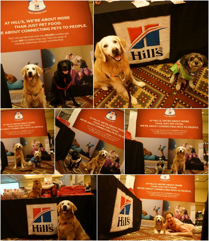 Hill's Pet Booth at BlogPaws
