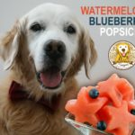 How To Make Watermelon Blueberry Popsicle