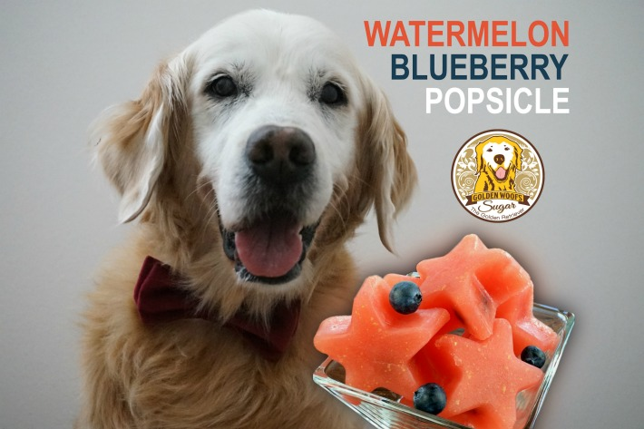 How To Watermelon Blueberry Popsicle